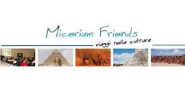 Micerium Friends